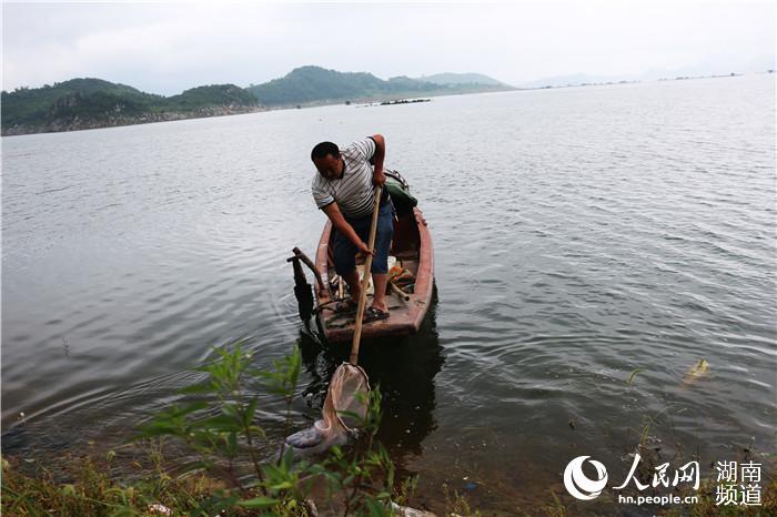 打捞东江湖漂浮物