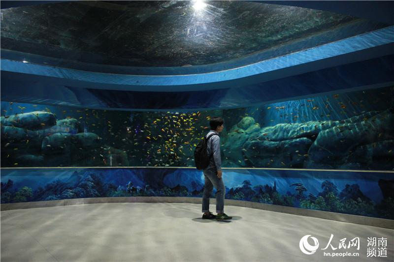 长沙立方海洋公园图片