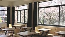 坐在教室就能赏最美樱花近日,樱花盛开,南京东南大学四牌楼校区有一间教室火了,颜值简直爆表。