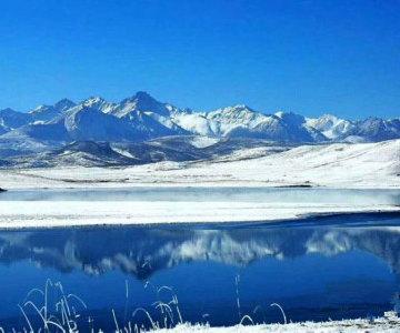 甘肃山丹军马场迎降雪缓解旱情 雪后美景怡人