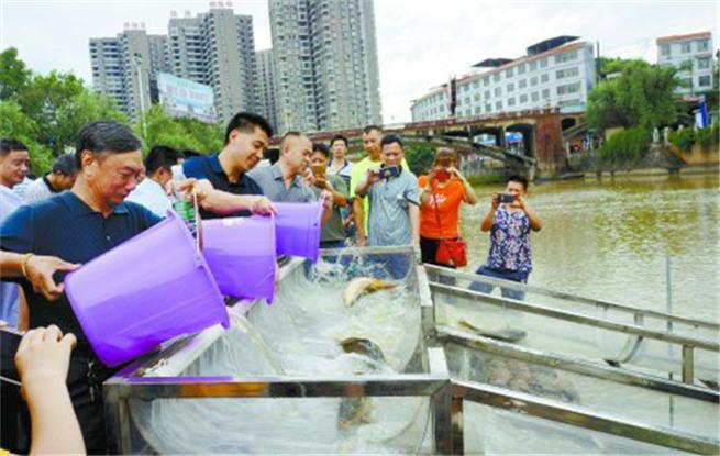 人工增殖放流  保护湘江源头