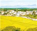 永州道县:美丽乡村展新颜        道县祥林铺镇两河口村,白粉外墙的村庄、碧绿的田野,与蓝天白云相互映衬,展现出一幅美丽的乡村图景。