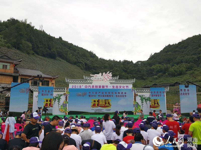 2018中方县刺葡萄节 生态文化节开幕