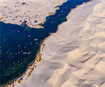 """到沙漠看""""海""""去"""