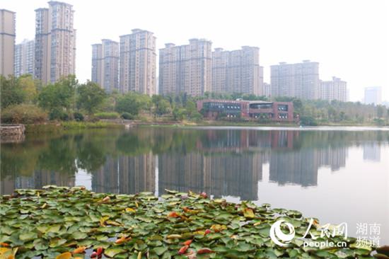 http://www.hunanpp.com/hunanfangchan/68419.html