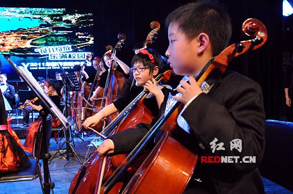 湖南首支小学生交响乐团平均登台献艺鞋子仅年龄小学生图片图片